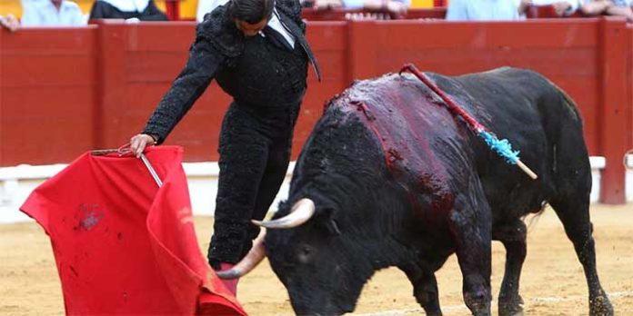 Un muletazo de Morante hoy en Alicante. (FOTO: Vigueras/mundotoro.com))