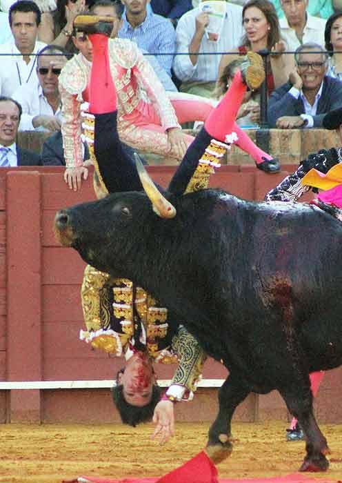 Espeluznante voltereta de Esaú Fernández en el primer toro. (FOTO: Javier Martínez)