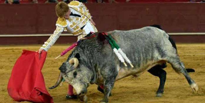 Derechazo de Borja Jiménez en el toro al que le ha cortado la oreja hoy en Valdemorillo. (FOTO: Julián López / mundotoro.com)