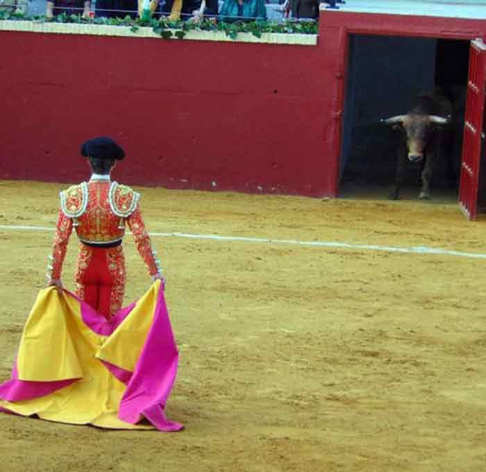 Así recibió Calerito al quinto novillo del festejo en Alcalá del Río.