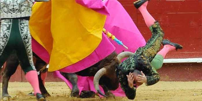 Instante de la cornada sufrida por Acevedo hoy en Valencia. (FOTO: Alberto de Jesús/Mundotoro)