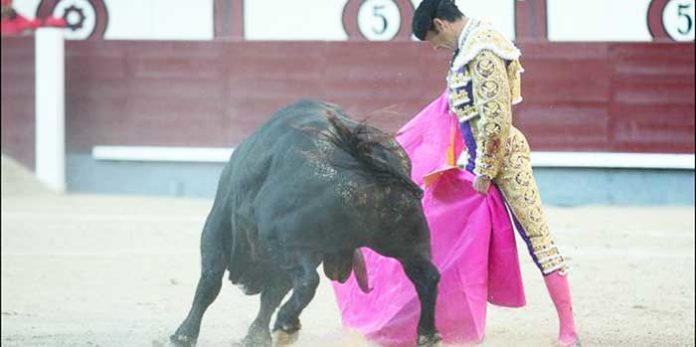 El Cid, esta tatde en Madrid. (FOTO: las-ventas.com)