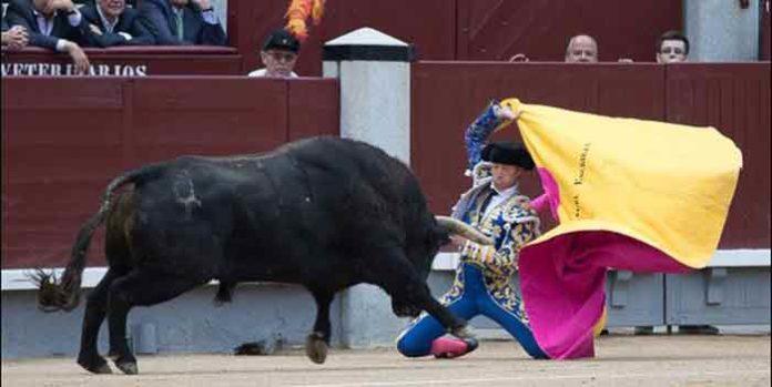 El sevillano Manuel Escribano, esta tarde en Madrid, fiel a su personalidad. (FOTO: las-ventas.com)