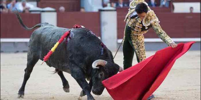 Un natural de El Cid hoy en Madrid. (FOTO: las-ventas.com)