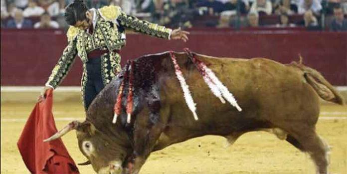 Muletazo de Morante esta tarde de sábado en Zaragoza.