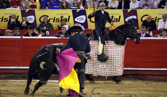 Morante llevando a su novillo al caballo hoy en Manizales. (FOTO: Julián Velasco/mundotoro.com)