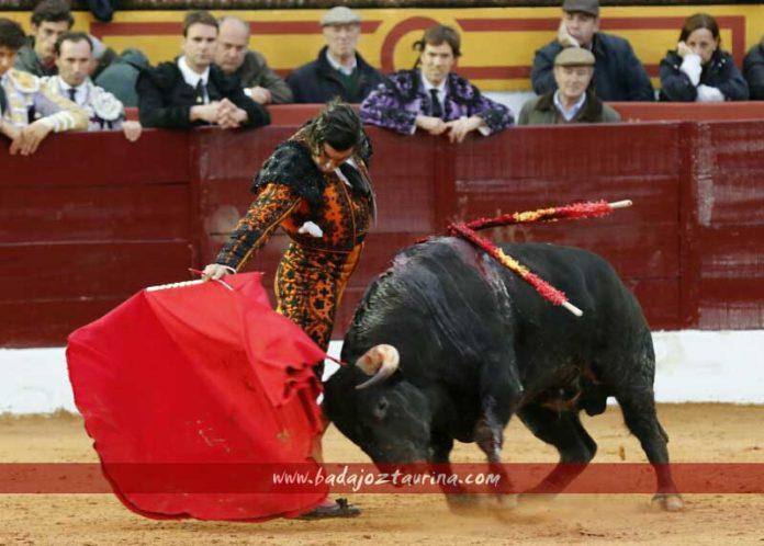 Derechazo de Morante en la segunda faena de hoy domingo en Olivenza. (FOTO: Gallardo / badajoztaurina.com)